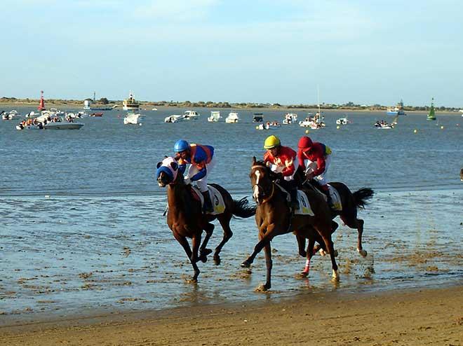 andalusian-horse-sanlucar-race