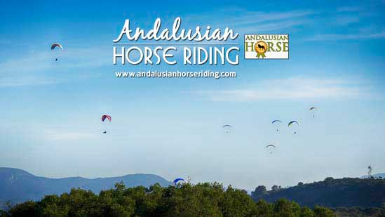 paragliding andalusian horse