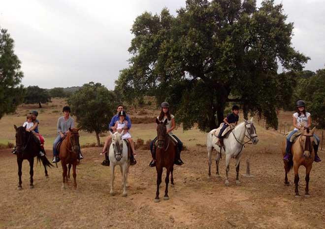 natural-park-andalusian-horse