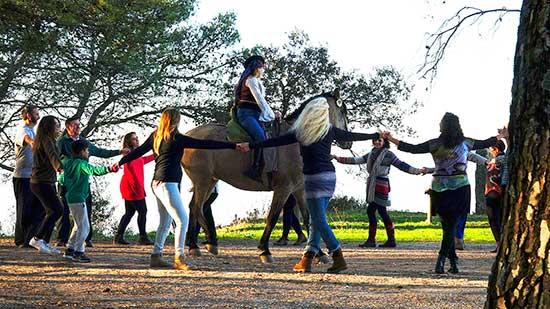taichi andalusian horse riding